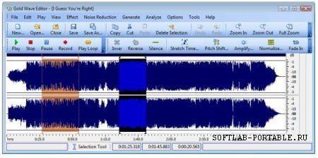 Gold Wave Editor Pro 10.5.2 Portable
